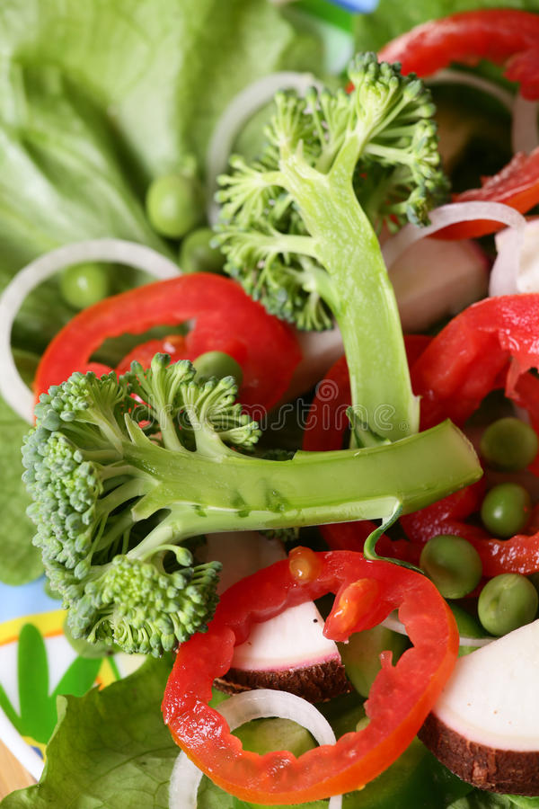 Download Fresh salad stock photo. Image of ingredients, side, healthy - 18111854