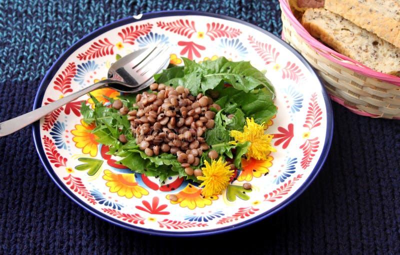 Salad of dandelion and lentils. A fresh salad of dandelion and lentils stock photos