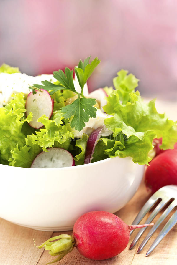 Download Fresh salad stock photo. Image of vegetable, meal, cheese - 40470002