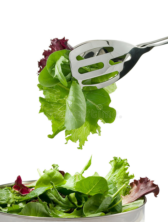 Fresh salad leaves royalty free stock photo