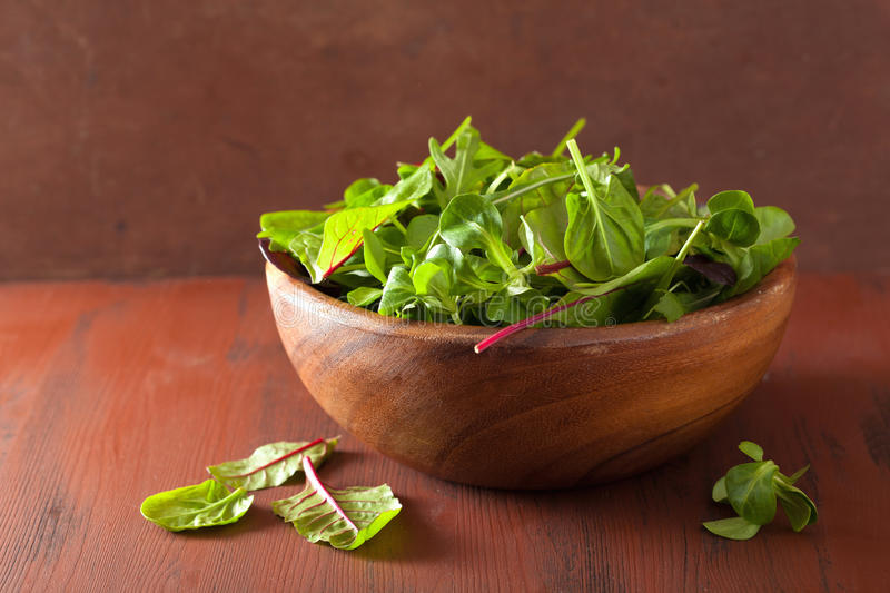 Fresh salad leaves in bowl: spinach, mangold, ruccola stock photos