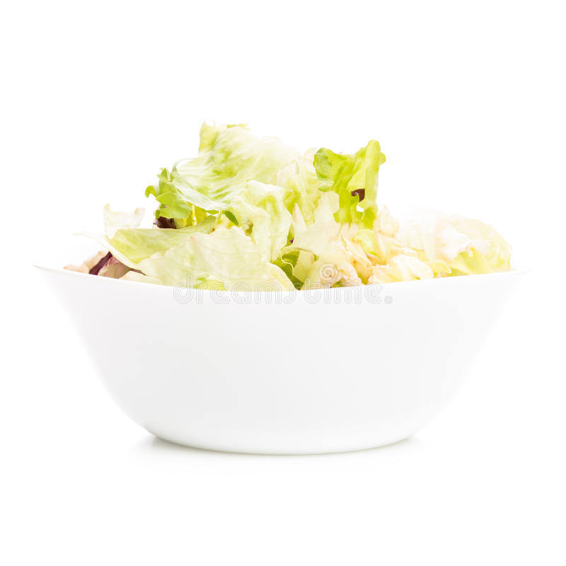 Fresh salad in white dish isolated on white background stock photography