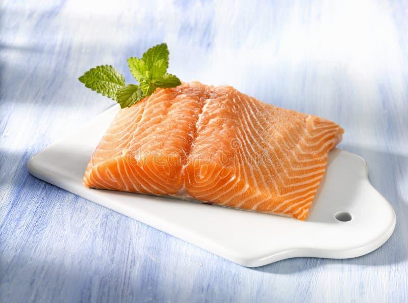 Fresh salmon royalty free stock photos