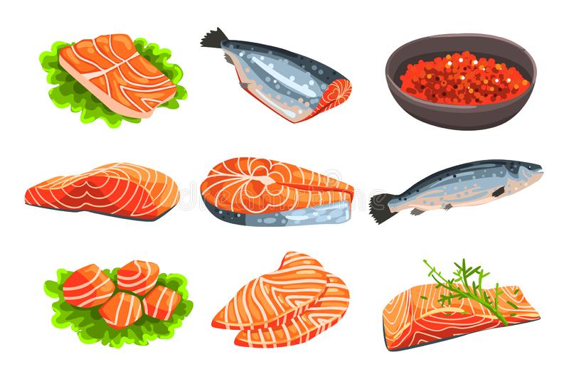 Fresh salmon fish set, fillet, steak and caviar, seafood product vector Illustrations on a white background stock illustration