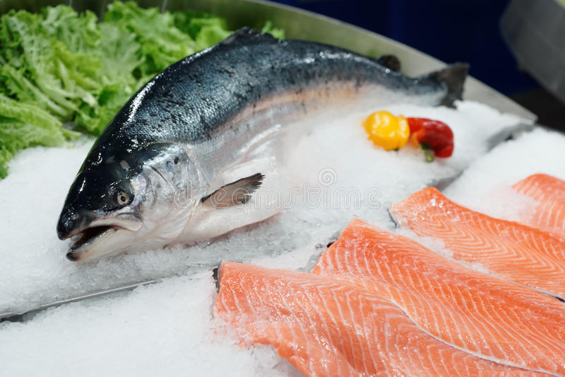 Fresh salmon on ice royalty free stock image