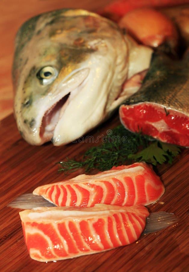 Fresh salmon royalty free stock photography