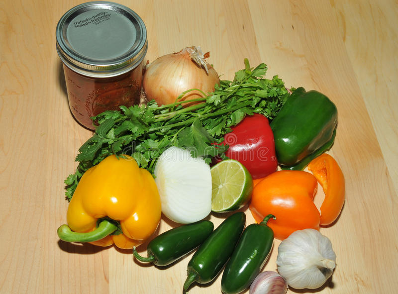 Fresh Salsa stock images