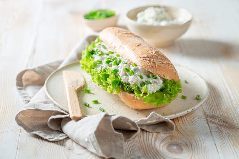Fresh sandwich with crunchy bread, fromage cheese and chive. On wooden table royalty free stock images