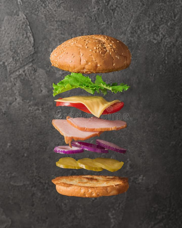 Fresh sandwich with flying ingredients isolated on concrete background royalty free stock photos