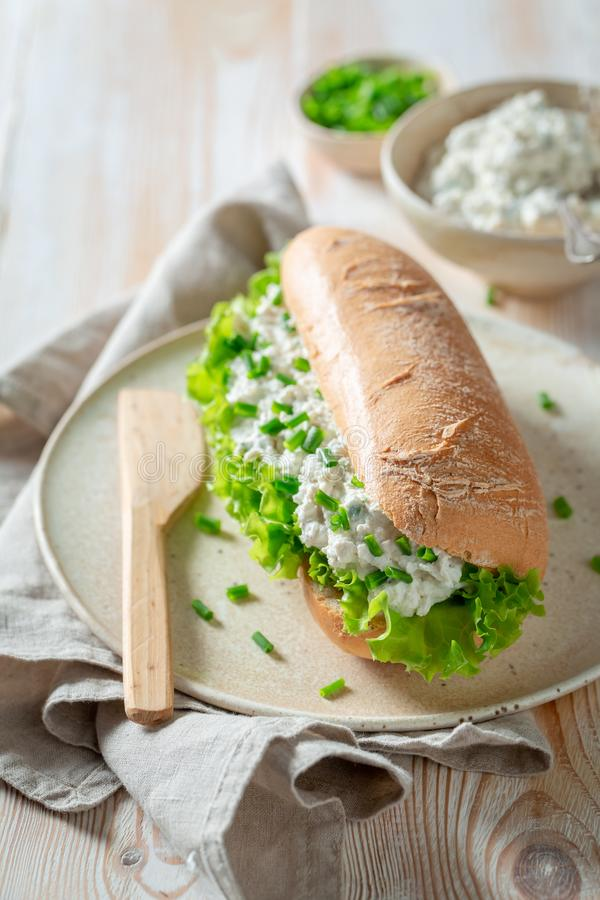 Fresh sandwich with fromage cheese, crunchy bread and lettuce. On wooden table stock image