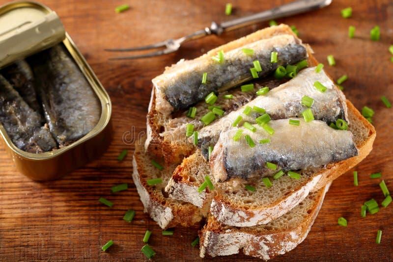 Fresh sandwich with sardines on wholegrain bread stock photography