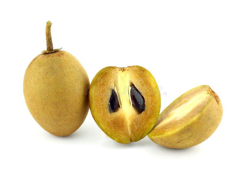 Download Fresh Sapodilla fruits stock photo. Image of sapodilla - 26089390