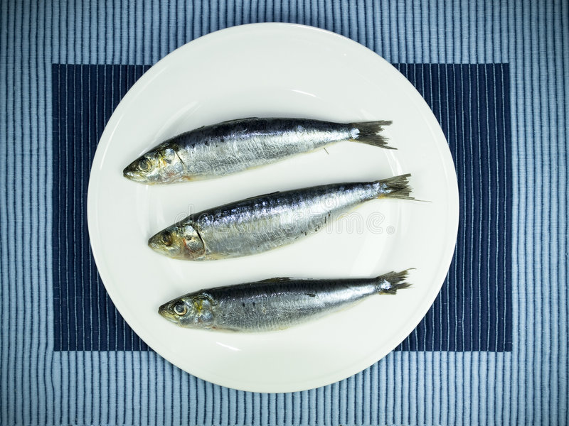 Fresh sardine. On a plate stock image