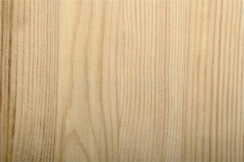 Fresh Sawed Pine Tree Wood Texture Unpolished Stock Image
