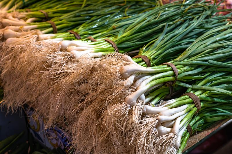 Fresh scallions or green onions at the farmers market stock photo