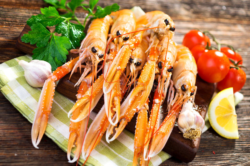 Fresh Scampi / Nephrops norvegicus royalty free stock photos