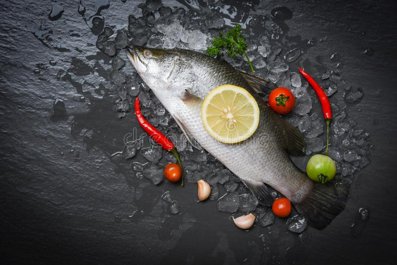 Fresh sea bass fish for cooking with herbs and spices stock photos