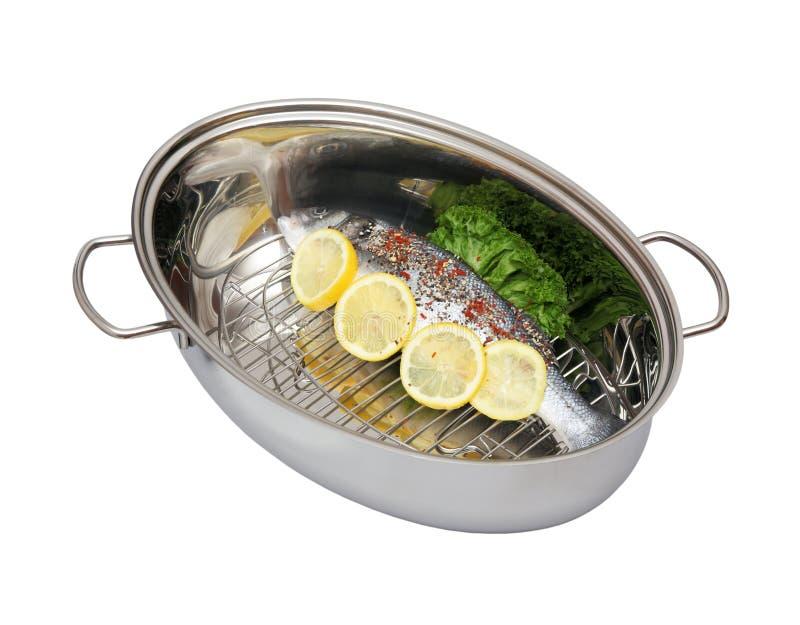 Fresh sea bass fish in the steam pot stock image