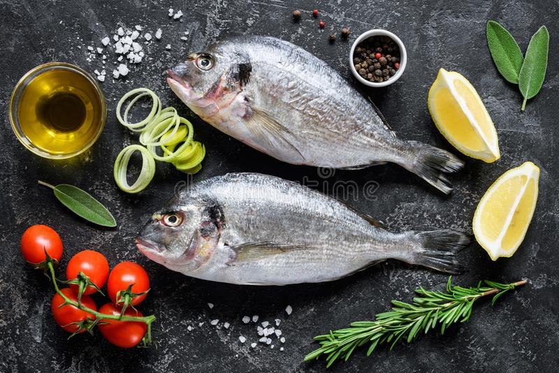 Fresh sea fish Dorado or Sea Bream with herbs and spices on slate background ready for cooking royalty free stock photography