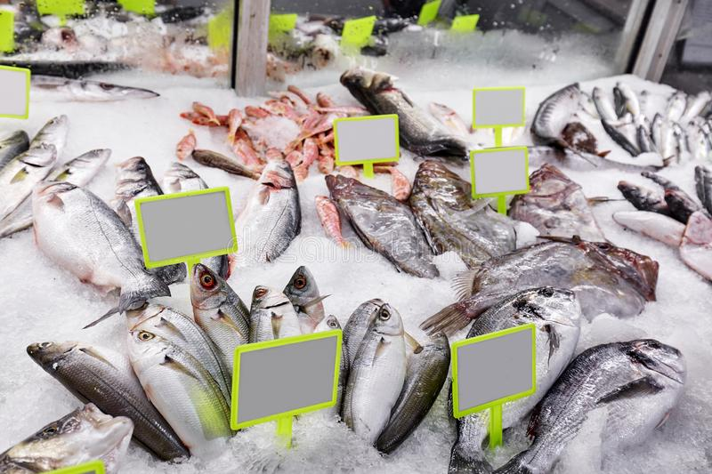 Fresh sea fish on ice and price tags on the market counter. Close up royalty free stock image