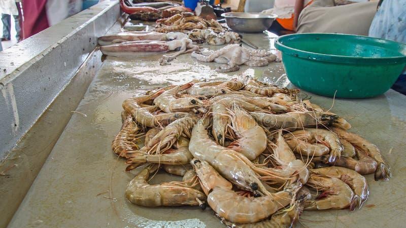 Fresh sea food in the market stock photos