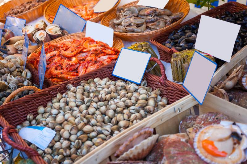 Fresh seafood arrangement displayed in market, healthy life royalty free stock photo