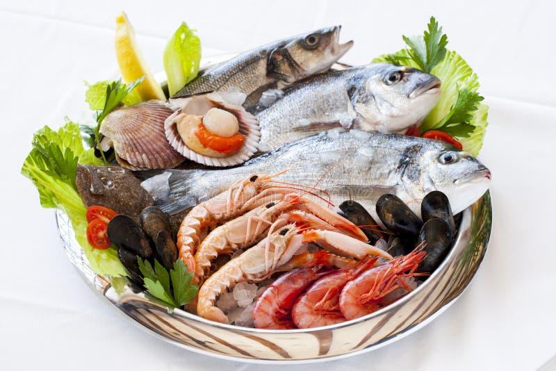 Fresh seafood. royalty free stock photo