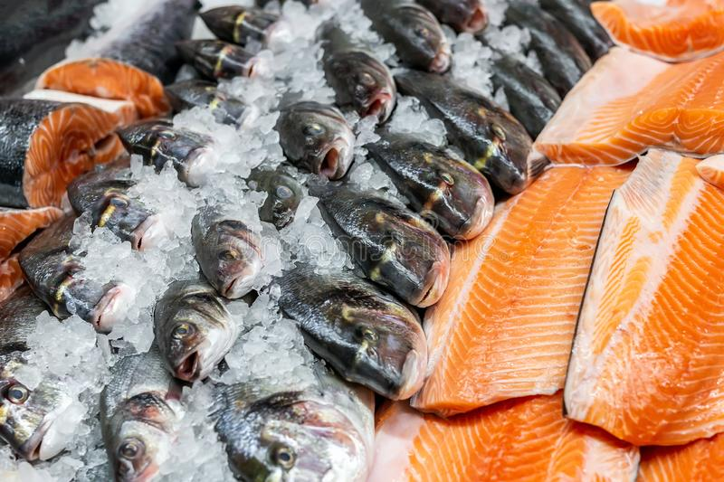 Fresh seafood on crushed ice at fish market. Raw dorado, seabass and salmon fillet on display counter at store. Fish filleting.  royalty free stock images
