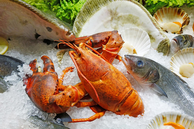 Fresh Seafood on Ice royalty free stock images