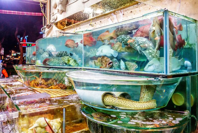 Fresh seafood market in Sai Kung, Hong Kong, full of different kinds of sea creatures for sale. Night view. stock images