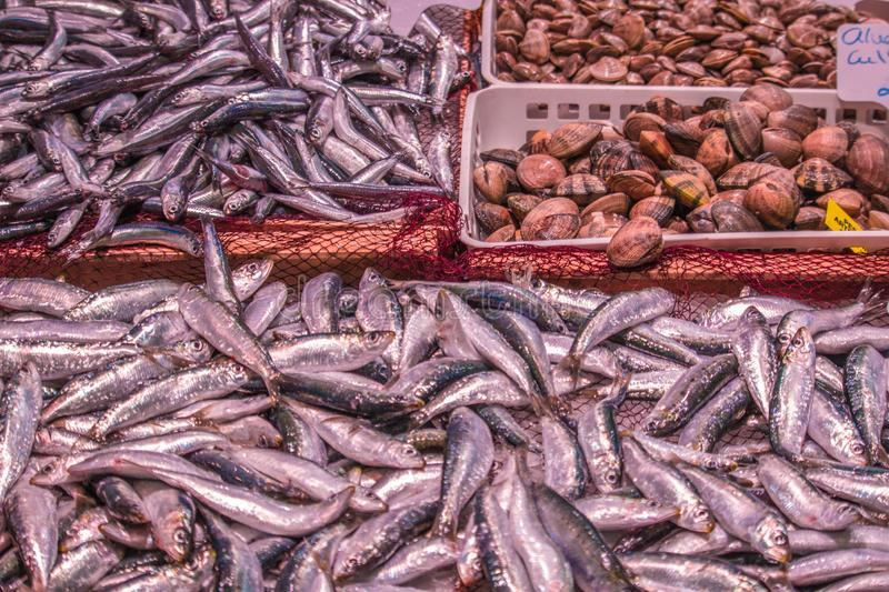 Fresh seafood on the marketplace stock image