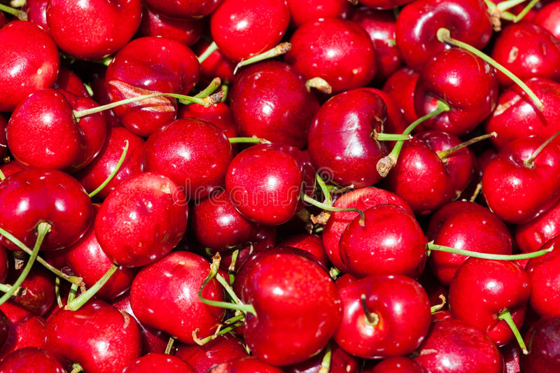Fresh set of Red cherries stock image
