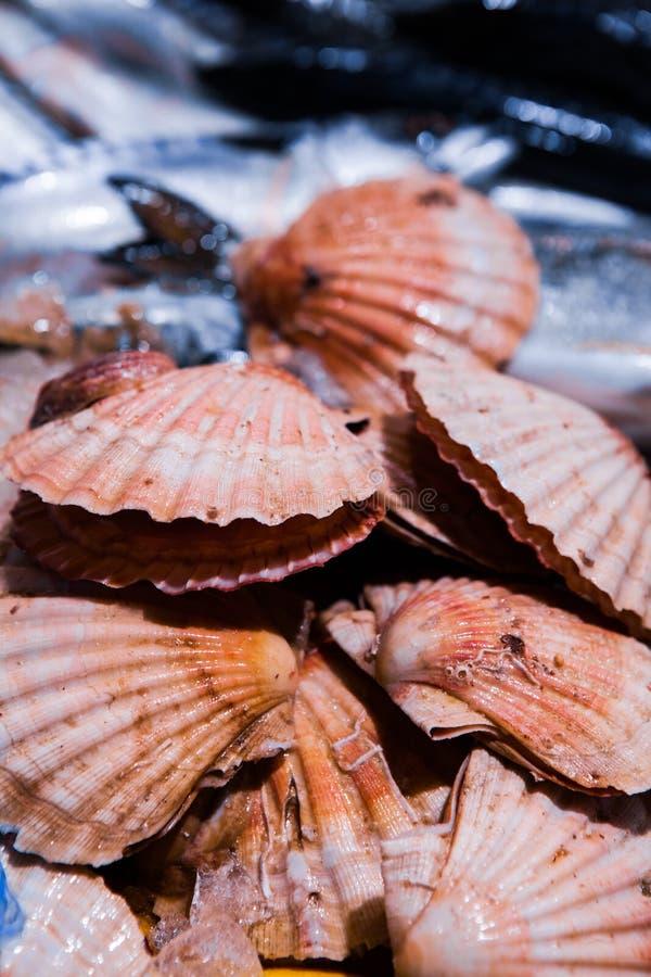Fresh Shellfish display on English Market for sale. Cork/Ireland stock photography
