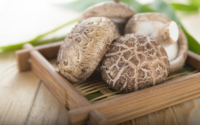 Fresh Shiitake mushroom on bamboo basket. Fresh Shiitake mushroom on a bamboo basket royalty free stock image
