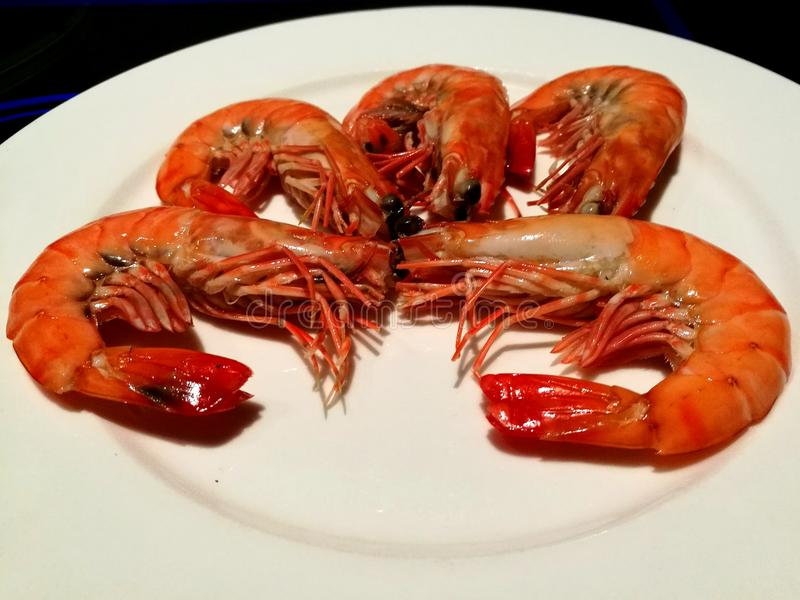 Fresh shrimp. Best seafood in town, great appetizer for your fine dining stock image