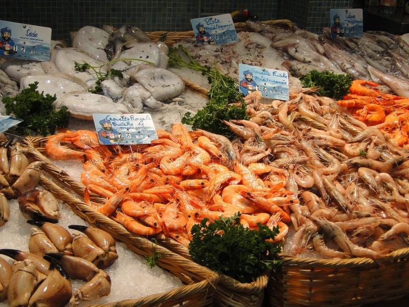 Fresh shrimp and calamari. In the market of Les Halles, Avignon, France royalty free stock photos
