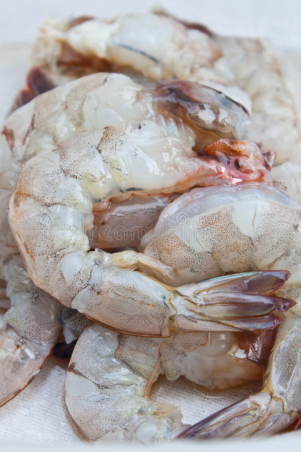 Fresh Shrimp For Cooking Royalty Free Stock Photo
