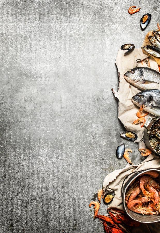 Fresh shrimp, fish and shellfish. stock images