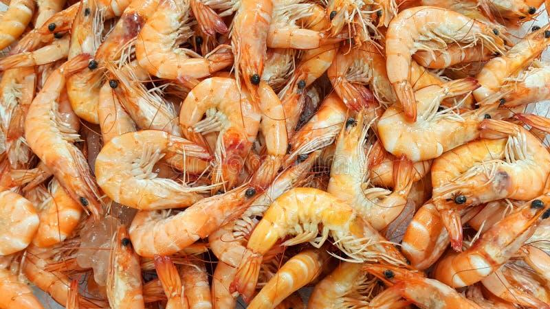 Fresh shrimp on the market royalty free stock photos