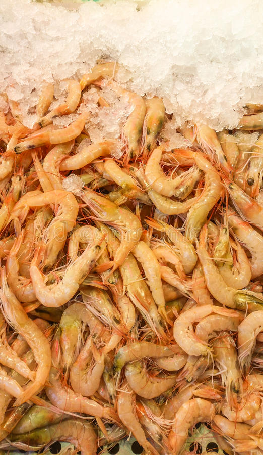 Fresh shrimps with ice in the bazaar. Fresh shrimps with ice in a tray royalty free stock images