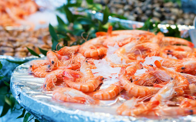 Fresh shrimps on a market. Fresh shrimps on a seafood market royalty free stock images
