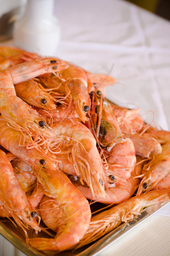 Fresh shrimps plate royalty free stock photography