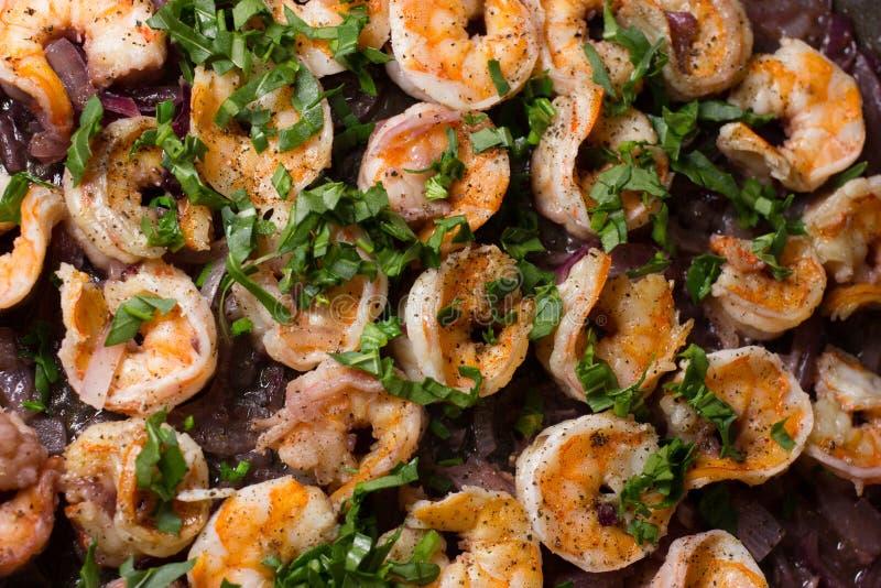 Fresh shrimps stock image