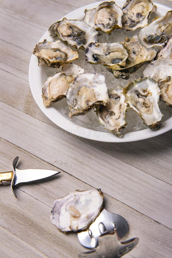 Fresh shucked oysters plate over wood background stock image