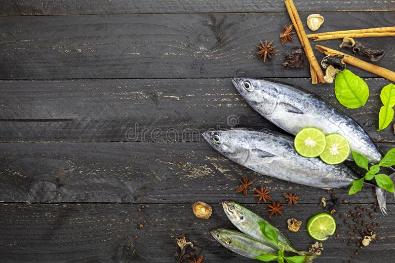 Fresh skipjack tuna fish on dark black wooden background, Fish with spices and vegetables, cooking background concept stock photography