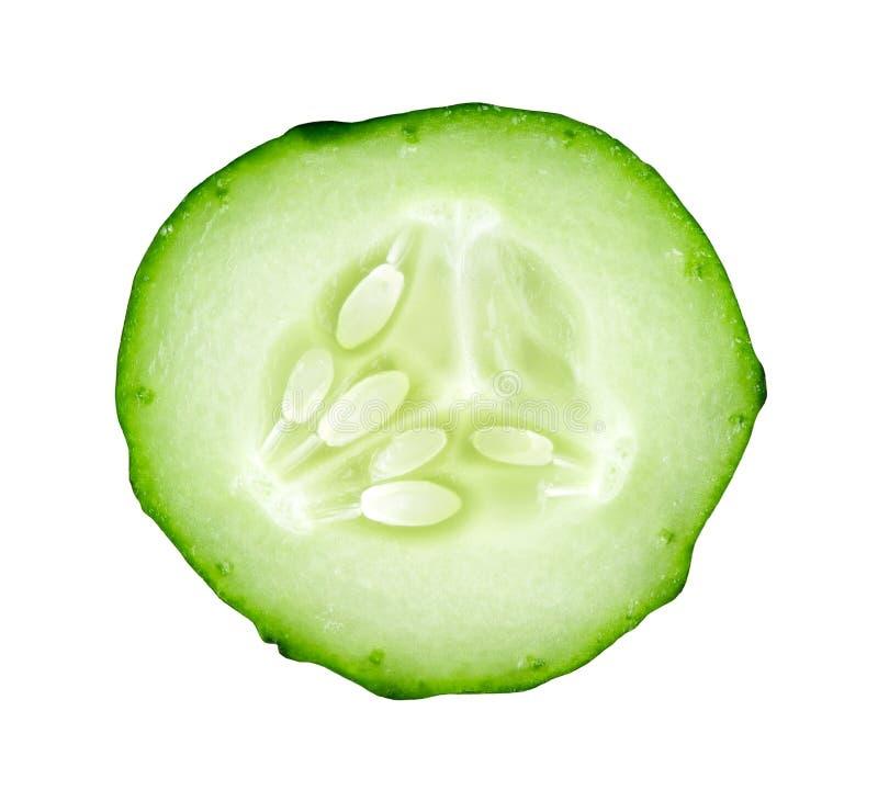 Fresh slice cucumber royalty free stock photography