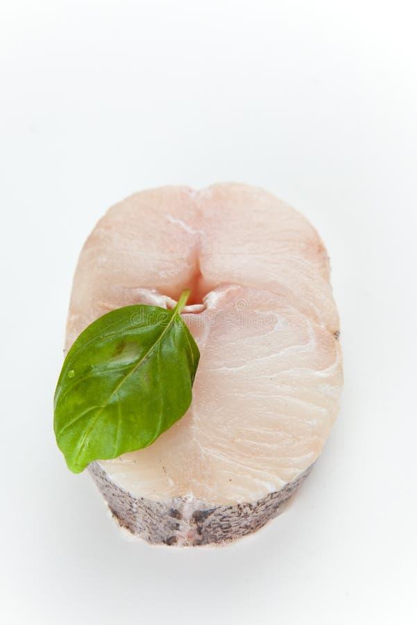 Fresh slice of hake stock photos