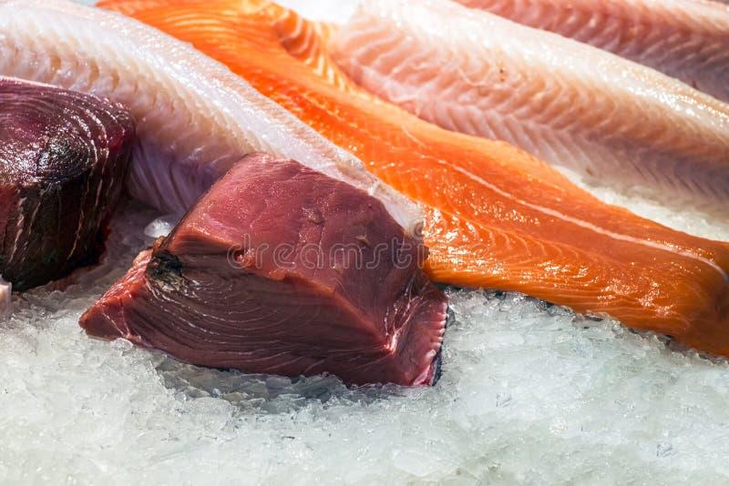 Fresh sliced of salmon on ice stock photography