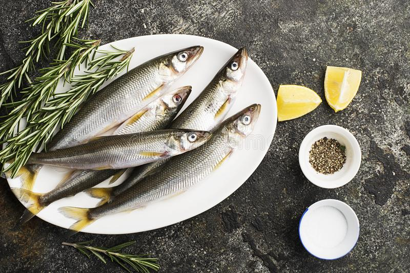 Fresh small sea fish smelt, sardine on a simple background with salt, rosemary and lemon slices. Top view. The concept. Of healthy sea food stock image