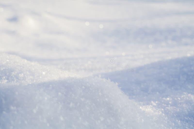 Fresh Snow Macro royalty free stock image